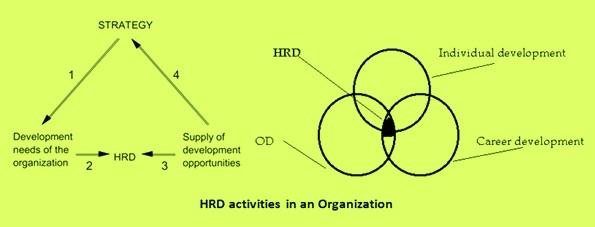 HRD activities