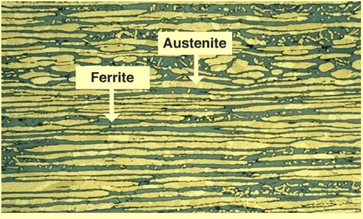 Microstructure of duplex SS