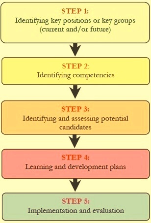 Steps in succession planning process