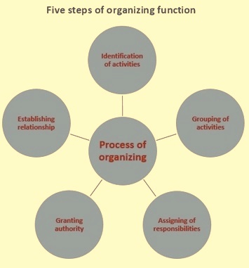 Five steps of organizing function