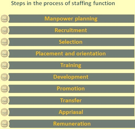 Steps in the process of staffing function