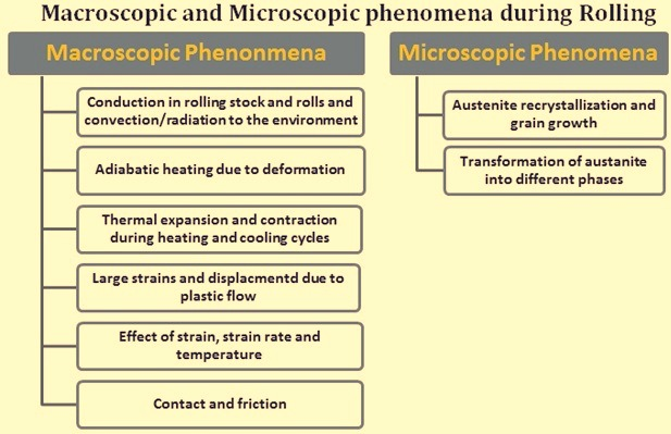 Macroscopic and microscopic phenomena during rolling