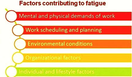 Factors contributing to fatigue